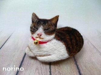 ■羊毛フェルト箱座り猫ちゃんブローチ■の画像