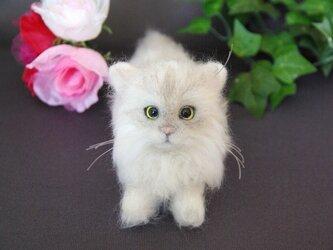 【N様オーダーペルシャ猫 まる子ちゃん】  ご予約品 の画像