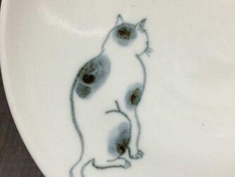 染付5寸猫皿 33の画像