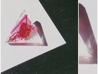 Birth Pierce/Earringsの画像