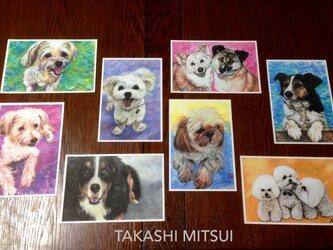 ワンコのポストカード8枚セットの画像