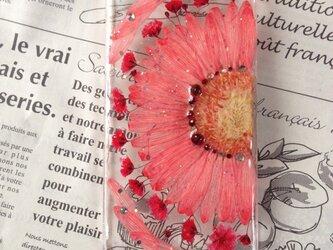 iPhone5.6 押し花ケースの画像