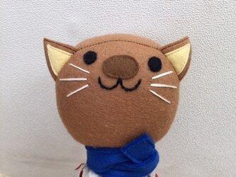 ネコちゃんの画像