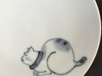 染付4寸猫皿 27の画像