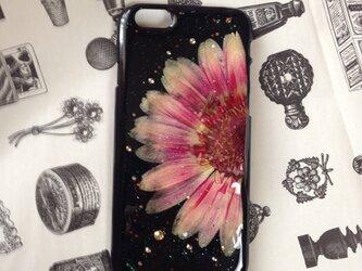 春新作008 iPhone6押し花の画像