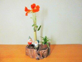 一輪挿し 森の小人とアロエの画像