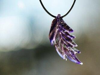 紫宮の翼の画像