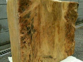 流木素材(楠)の画像