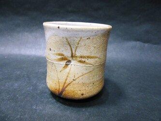 竹ふし湯呑の画像