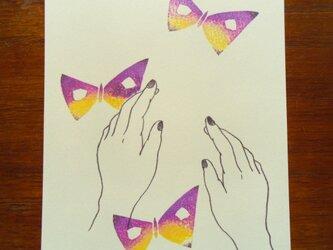 ポストカード(2枚)  手と蝶の画像