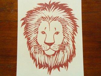 ポストカード(2枚)  ライオンの画像
