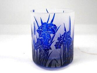 カキツバタオールドグラスの画像