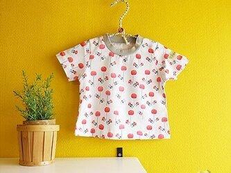 baby Tシャツ:タンポポ(ピンク)の画像
