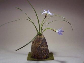 石輪挿し 石の花入れ 山野草の生け花 K-167の画像