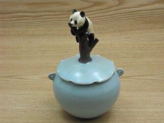 水青樹登大熊猫耳付飴小壺ーBの画像