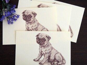ポストカード パグ「おすわり」同柄4枚の画像