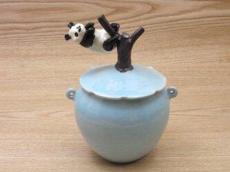 水青樹登大熊猫耳付飴小壺ーDの画像
