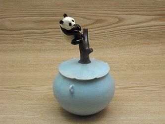 水青樹登大熊猫耳付飴小壺ーFの画像