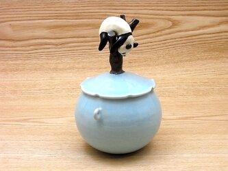 水青樹上爆睡大熊猫耳付飴小壺−Fの画像