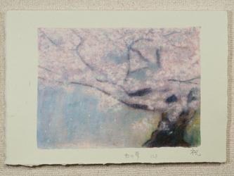 半懐紙 B-158の画像