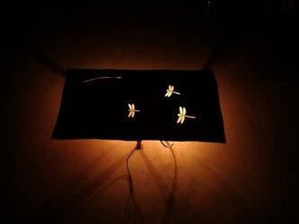 灯り 「草原のトンボ」の画像
