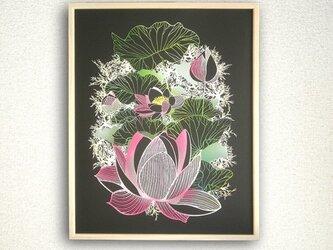 Lotus/連の画像