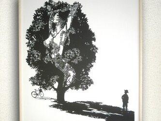 worried tree/気になる樹の画像