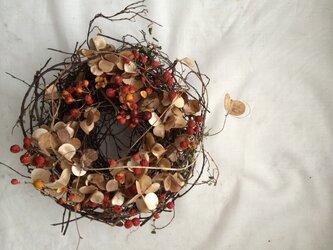 山芋のツル ツルウメモドキ リースの画像