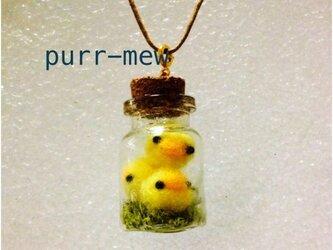 [再販,受注製作]  ひよこ盛り モス 小瓶ペンダントの画像