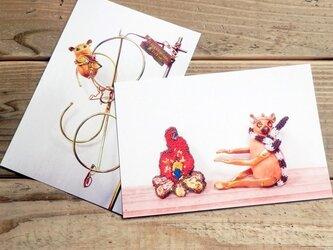 動物ポストカード2枚セット 「メガネザル」「ワオキツネザル」の画像