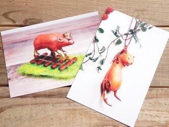 動物ポストカード2枚セット 「ヤブイヌ列車」「吊られフェレット」の画像