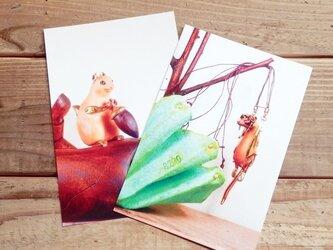 動物ポストカード2枚セット 「ドングリ隠しのリス」「ハナグマ」の画像
