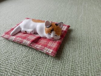 ねむりネコ チコちゃんの画像