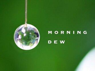 朝つゆ ピアスの画像