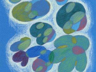 水玉のおどりの画像