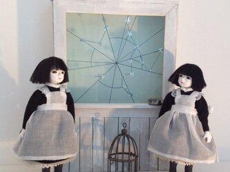 星ひろい   (左)の画像