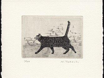 横向きの猫・2015 / 銅版画 (作品のみ)の画像