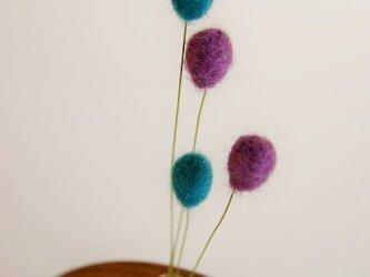 noco-moco バルーンブーケ 【紫式部&コバルトブルー】の画像