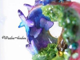 月光蝶(りんごの森の小さな住人シリーズ)の画像