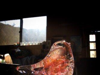 ダークピンク×ゴールドトパーズの小鳥の画像