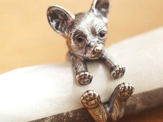 犬リング チワワの画像