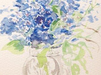 「elegant flower Delphinium」の画像
