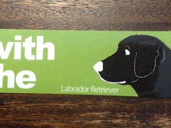 選ぶ愛犬1匹 横顔 ステッカー DOG IN CARの画像