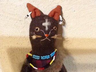 アフリカンcatの画像