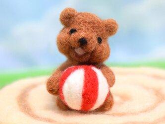 ボールで遊んで欲しそうにこっちを見ているコグマの画像
