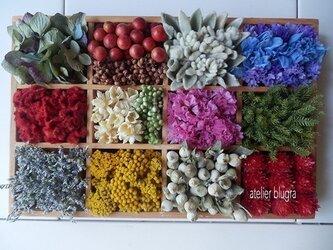 八ヶ岳〜Flowerコレクションボード02の画像