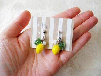 【再販】チェコ製ガラスビーズのレモンイヤリングの画像