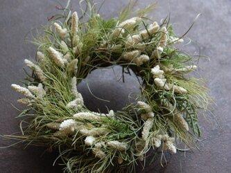 てのひらリース 「野原に降る雪」の画像