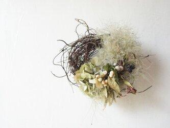 鳥の巣リース miniの画像