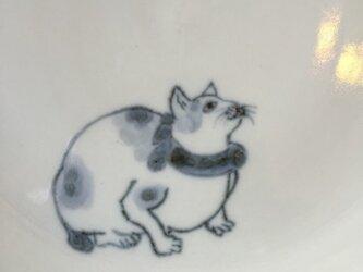 染付5寸猫皿 37の画像